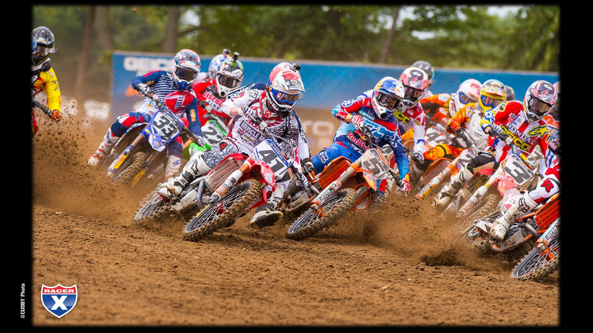 red bud wallpapers